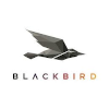 Blackbird plc